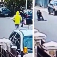 O Momento Fantástico Que Um Cachorro De Rua Herói Salva Uma Mulher Inocente De Um Assaltante