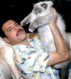 As adoráveis imagens de Freddie Mercury