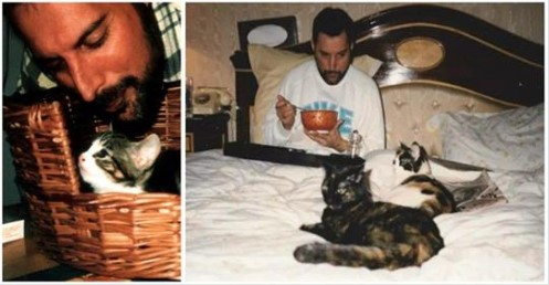 As adoráveis imagens de Freddie Mercury! Ele amavam seus gatos como se fossem seus próprios filhos.