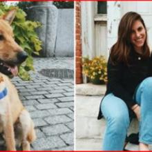 Ela perdeu seu cachorro no Natal e 4 meses depois uma mulher o resgata nos trilhos do trem