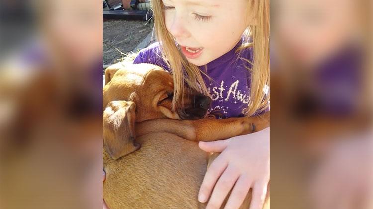 A Doce Canção de Ninar da Menina Para Seu Cão Recém-Adotado