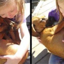 A Doce Canção de Ninar da Menina Para Seu Cão Recém-Adotado Já Comoveu 23 Milhões de Corações!