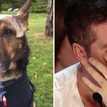 Cão Policial e seu Dono Fazem Simon Cowell Chorar Depois de Revelar sua História Heroica!