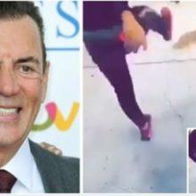 Empresário oferece 6.000 euros para quem identifica o sujeito que chutou um gato pelo ar