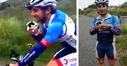 Esse Ciclista Ouve Alguns Miados à Distância e Decide Parar Para Ajudar o Anjinho de Patas!