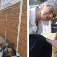 Uma Farmacêutica vê um Cachorrinho na Porta e Percebe que ela veio Pedir Ajuda!