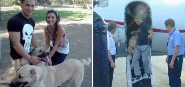A Herdeira de Wrigley Fretou um Jato Particular Depois que a Marinha Americana Não Pode Voar Com seus Cães em Voos Comerciais.