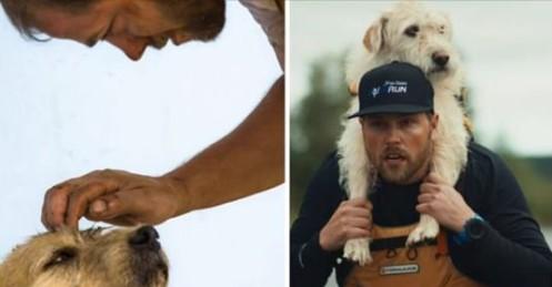 Cão de Rua Segue Atletas Extremos Por Quase 700 Quilômetros em Busca de Uma Vida Melhor!