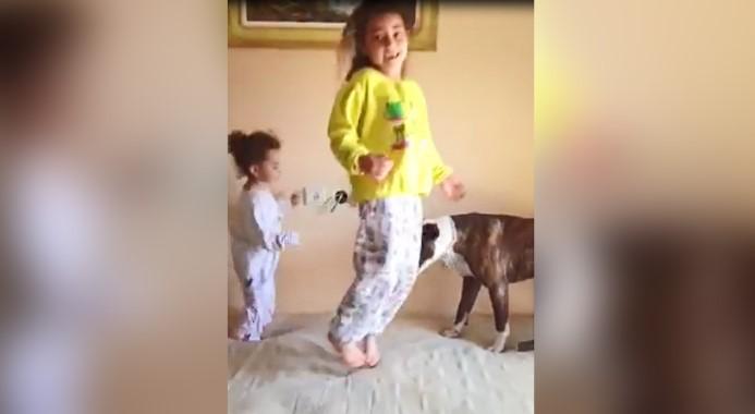 Duas Menininhas Ensinam o Cachorro a Pular na Cama e Sua Alegria Encanta o Mundo