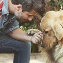 Bruno Gagliasso Constrói Casa de Recuperação Para Animais Abandonados