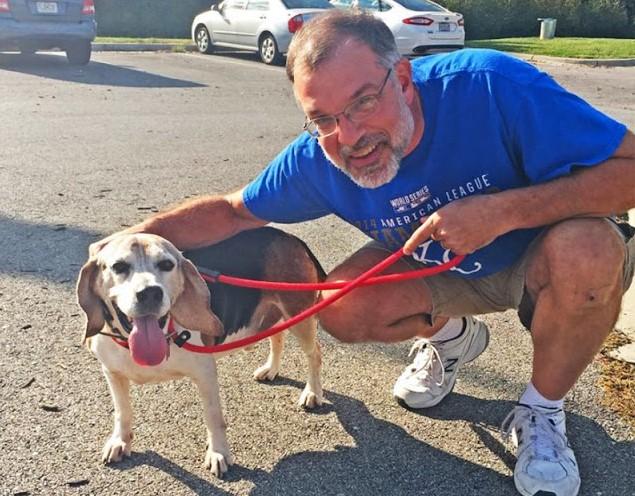 Idoso cria abrigo para cães abandonados