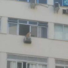 Cão é resgatado após ficar para fora da janela de apartamento do 7º andar.