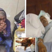 Morador de Rua à Beira da Morte Chora Quando Sente a Patinha de seu Filhote ao seu Lado.