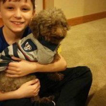 Garotinho adotou cão idoso, para que ele pudesse ter um final de vida cheio de amor