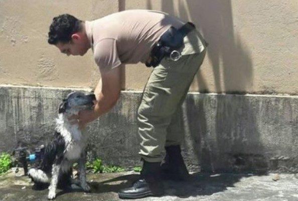 Sargento Ajuda Cão que Desmaiou em Agonia Por Causa de Calor Intenso