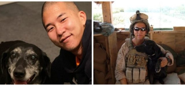 Cabo da Marinha Adota Cão Farejador de Bombas que Salvou sua Vida no Afeganistão.