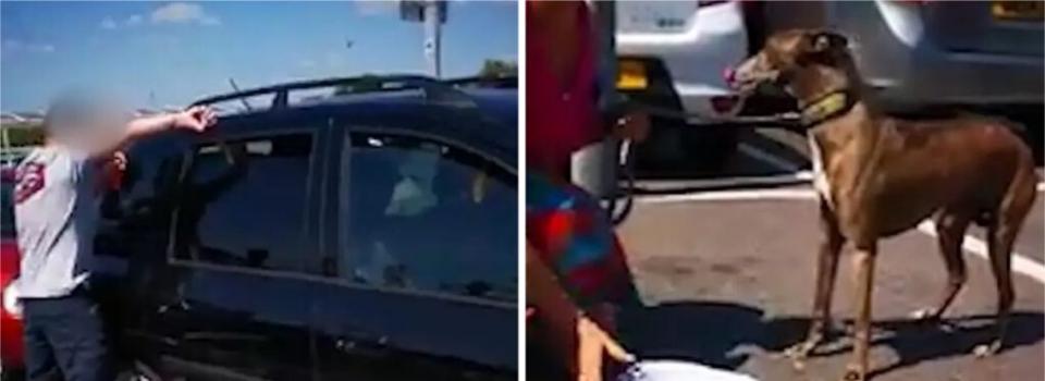 Homem quebra janela de carro para resgatar cachorro que estava preso em veículo com calor extremo