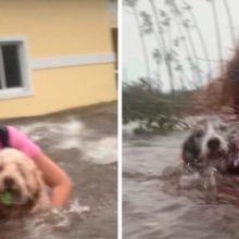 Jovem não largou por nada seus dois cães no meio de um furacão