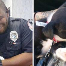 Policial responde a chamado em abrigo de animais e acaba adotando um filhote