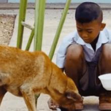 Criança Dividindo seu Café com Cãozinho Ganha o Mundo