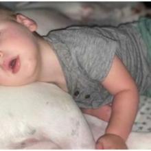 Bebê Foge de sua Cama no Meio da Noite para Dormir com seu Amado Cachorro