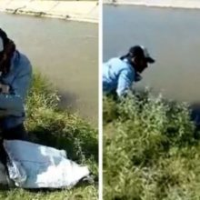 Cão Não Para de Agradecer ao Homem que o Salvou de se Afogar em Canal