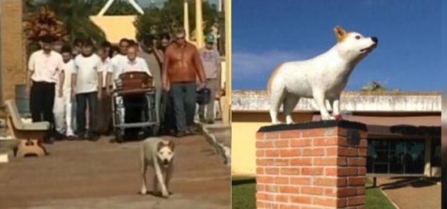 Esse Cachorro que Acompanhava Velórios, Partiu e Recebeu uma Estátua em Sua Homenagem
