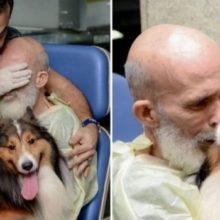 Homem Hospitalizado Melhora Consideravelmente Depois de Receber Visita de seu Cachorro
