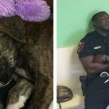 Policial Salva Filhote de um Triste Fim, Não sai do seu Lado e Decide Adotá-lo