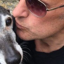 Após 18 anos de lealdade à família, este cão recebe o presente de despedida mais comovente