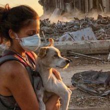 Após Terrível Explosão em Beirute, o Emocionante Reencontro dos Animais Resgatados com seus Donos