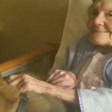 As Enfermeiras não Contiveram as Lágrimas Quando Viram a Reação Desta Senhora ao Receber a Visita de Cachorro