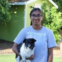 Ela foi Adotada Quando Tinha 1 Ano, Hoje ela Ajuda Cães Idosos a Encontrar um Lar
