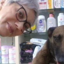 Farmacêutica vê cão na porta da farmácia e percebe que ele está pedindo ajuda