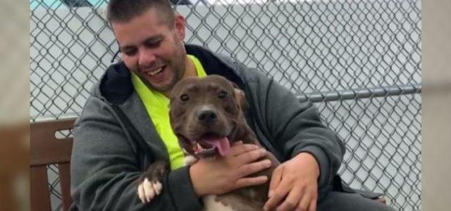 Homem Dirige por 6 Dias e Viaja 4.500 Quilômetros para Adotar Cachorro pelo qual se Apaixonou!