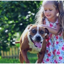 Menina de 11 Anos é Salva das Garras de um Pedófilo Graças ao seu Cachorro