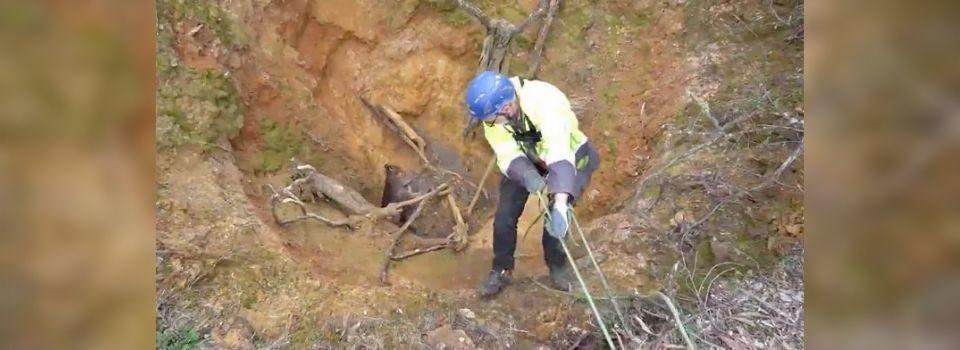 Salvador de Animais Desce em Poço da Mina para Salvar Animal Encalhado