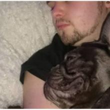 Cachorro Morre 15 Minutos Após Seu Dono Perder a Luta Contra o Câncer
