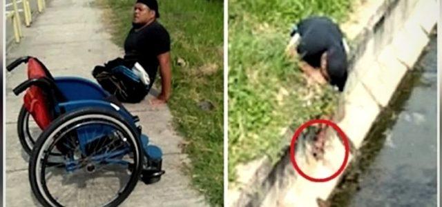 Cadeirante Larga sua Cadeira de Rodas e Se Arrasta para Resgatar Animal Indefeso