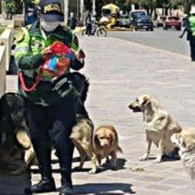 Policial Alimenta Cães de Rua e é Criticada, Acham que o Ato da Policial Motiva a Proliferação Desses Animais