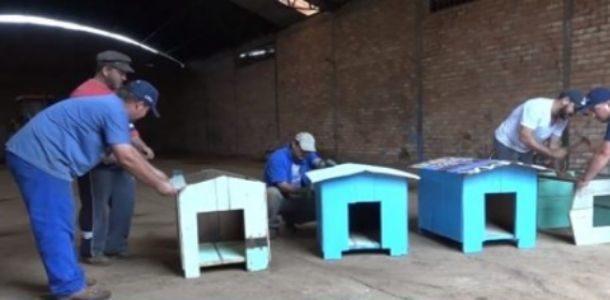 Empresa de Móveis Constrói mais de 100 Casinhas de Cachorro e doam para Famílias Carentes