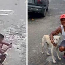 Cachorro faz xixi em um estranho e contra todas as probabilidades torna-se sua nova família