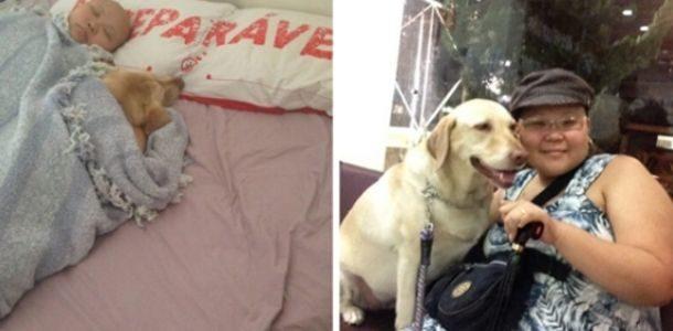 Desde que recebeu seu diagnóstico devastador, seu amado cão não saiu de seu lado