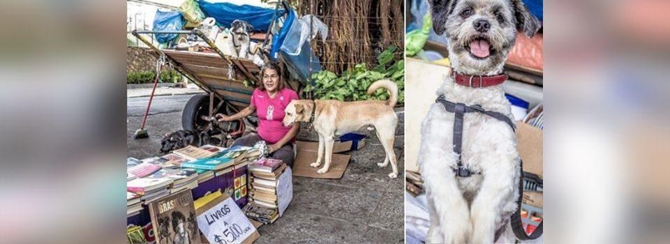 Moradora de rua Vende Livros Usados para poder Alimentar seus Cães
