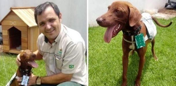 Percebendo que o cão seria abandonado, homem resolve agir rapidamente
