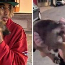 Rapper adota cachorrinho que seu dono jogou no meio de um ataque racista