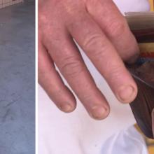 Cachorro de rua ajuda homem a encontrar carteira que ele havia perdido com quase R$ 4 mil dentro