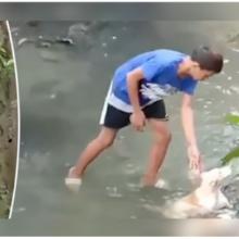 Jovem Herói Salva Cachorro que Estava Deitado Imóvel em Riacho