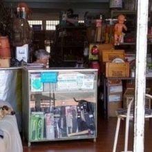 Senhor coloca sofá, água e ração em sua loja para dar um pouco de dignidade a cães de rua