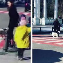 Cachorro para o trânsito para que grupo de crianças possa atravessar a rua com segurança